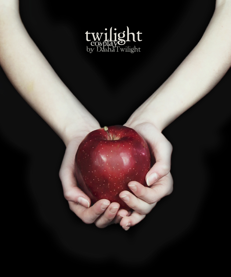 cover Twilight book