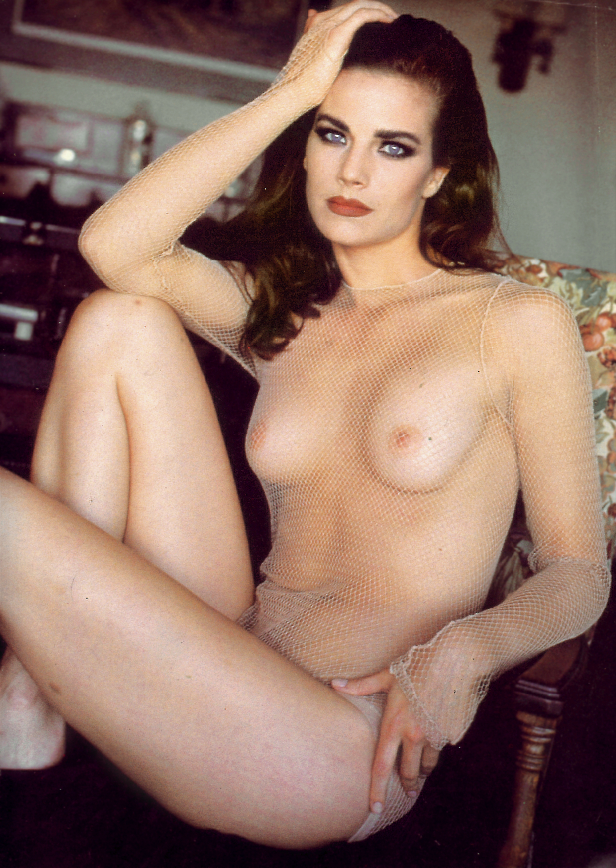 fakes Terry Farrell nude
