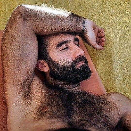bear Naked hairy men
