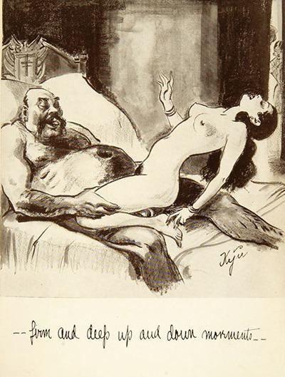 Adult erotic litature