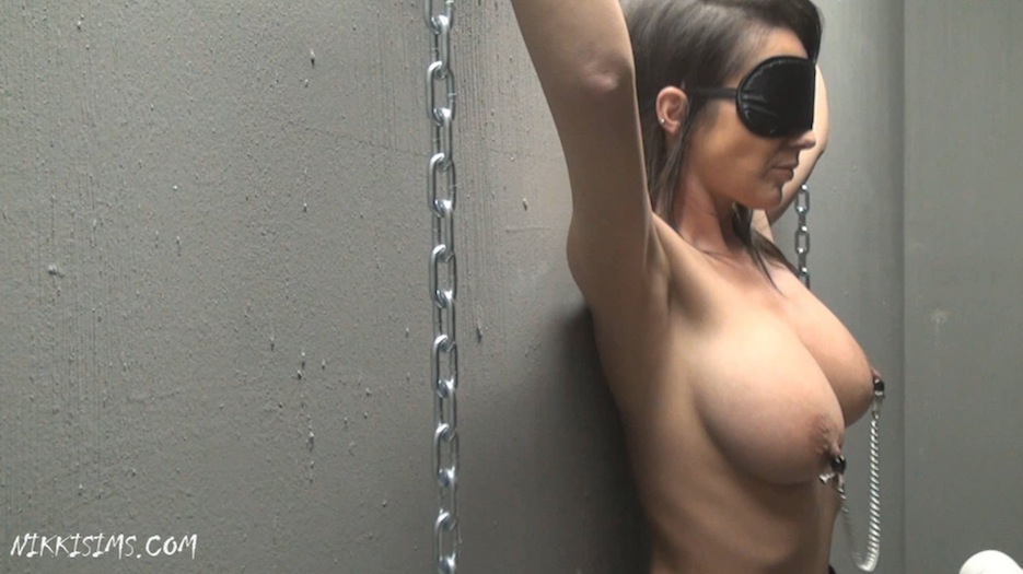 nikki next tied door