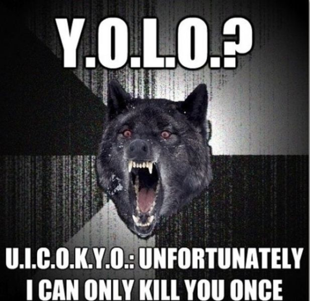 Internet memes funny